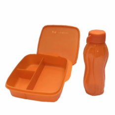 Spesifikasi Lunch Box Set Glittery Eco Lolly 2Pcs Set Orange Kotak Bekal Tupperware Terbaru