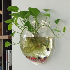 Mini Tangki Ikan Home Adornment Metope Aquarium Menggantung Tangki Vakum Floret Botol-diameter 15 Cm Transparan-Intl