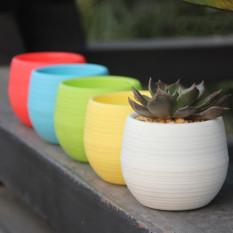 Jual Beli Online Mini Pot Bunga Hias Kaktus Tanaman Multi Color