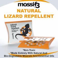 Beli Mossif Pengusir Cicak Lizard Repellent Americ Online