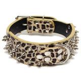 Jual Kalung Anjing Hiasan Paku Untuk Anjing Besar Dalam Emas Motif Leopard Grosir