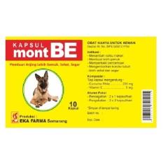 Obat Hewan Penambah Nafsu Makan Anjing Montbe