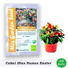 Obral Murah Benih-Bibit Cabai Hias Pelangi Numex Easter (Mix Garden)