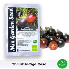 Obral Murah Benih-Bibit Tomat Ungu Indigo Rose (Mix Garden)