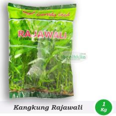 Obral Murah Benih/Bibit Kangkung Rajawali (Garuda Seed)