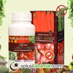 Beli Pestisida Anta 200Ml Obat Insektisida Pembasmi Hama Wabah Ulat Tanaman Sayur Sayuran Buah Anta