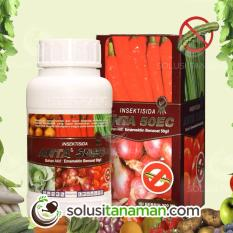 Tips Beli Pestisida Anta 200Ml Obat Insektisida Pembasmi Hama Wabah Ulat Tanaman Sayur Sayuran Buah Yang Bagus
