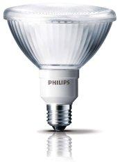 Jual Philips Par38 23W Ww E27 Kuning Lampu Sorot Di Dki Jakarta