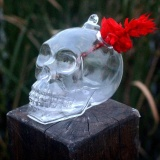 Diskon Plants Garden Flower Skull Shape Hanging Glass Vases Other Yard Outdoor Quality Intl Tiongkok