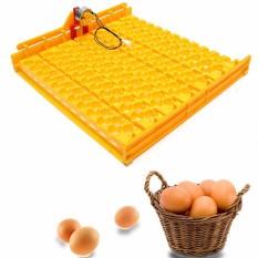 Plastik mesin penetas otomatis 154 telur puyuh Turner nampan dengan 220 V Motor - ต่าง ประเทศ