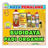 Review Terbaik Pupuk Budidaya Padi Organik Power Nutrition Supernasa Poc Nasa Hormonik Glio Bvr Pestona