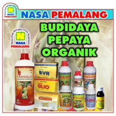 Rp 448.000. PUPUK PEPAYA ORGANIK POWER NUTRITION SUPERNASA ...