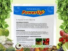 Jual Pupuk Power Up 100Gr Nutrisi Peningkat Napsu Makan Tanaman Biji Bibit Benih Kebun Tanaman Sayur Sayuran Buah Organik Taman Hidroponik Power Up Di Jawa Timur