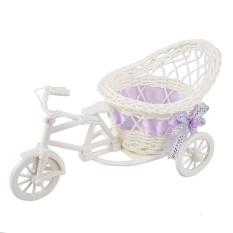 Rotan Becak Sepeda Keranjang Taman Pesta Kantor Kamar Tidur Vas Dekorasi Pernikahan-Intl