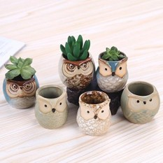 ROSE CREATE 6 Pcs 2.5 Inches Owl Pots, Little Ceramic Succulent Bonsai Pots with a Hole - Pack of 6 - intl