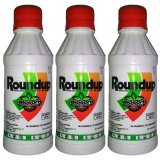 Jual Roundup Pembasmi Rumput 200 Ml 3 Pcs Murah