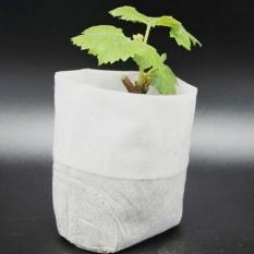 Sunshop 100 Pcs Kelangsungan Hidup Yang Tinggi Peralatan Memasak Di Luar Rumah Yang Lain: Bibit Membesarkan Tas Pot Pembibitan Kain Garden Supplies (8*10 Cm) -Intl