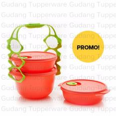 Tupperware Carry All Bowl - New Guava