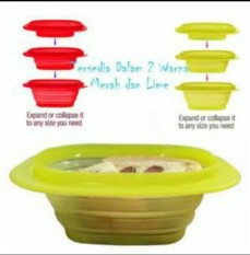 Tupperware Go flex (1)