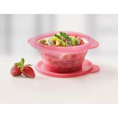 Tupperware Go Flex Round 700 mL