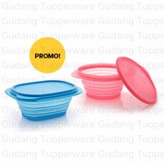 Tupperware GoFlex Set biru + Pink 2pcs