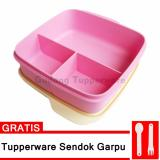 Review Tentang Tupperware Loly Tup Pink Free Cutlery