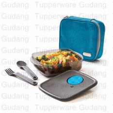 Tupperware New Xtreme Meal Box