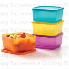 Tupperware Small Summer Fresh - 4 pc - Kotak Makan