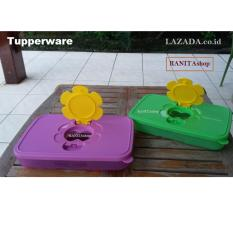 Tupperware Small Tissue Box 2pcs