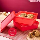 Review Tentang Tupperware Snakstor 1 Pcs