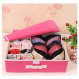 Jual Underwear Storage Box Tempat Penyimpanan Pakaian Dalam Lengkap