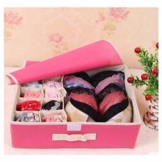 Underwear Storage Box Tempat Penyimpanan Pakaian Dalam Indonesia Diskon 50