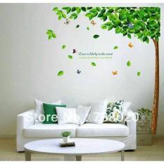 Wall Sticker/ Wallsticker 60X90 AY886 Big Tree