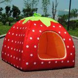 Beli Y100 Red S Red Green Formula Mongolia Sarang Classic Strawberry Doghouse Leaves Menangani Strawberry Murah Tiongkok