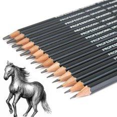 Tips Beli Ybc 14 Pcs Professinal Sketsa Seni Menggambar Pensil 6 H 12 B Sketsa Pensil Yang Bagus