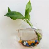 Toko Yika Gantung Pot Bunga Kaca Vas Terarium Jeluk 10 Cm Putih Terdekat