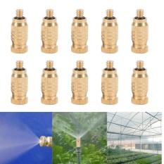 Review Yosoo 10 Pcs Kuningan Berulir Nosel Kabut Sprinkler Intl Oem Di Tiongkok