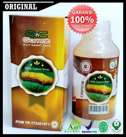 Obat Pengapuran Tulang Dan Sendi, Asam Urat, Nyeri Radang Sendi, Rematik, Reumatik Qnc Jelly Gamat By Jelly Gamat Herbal.