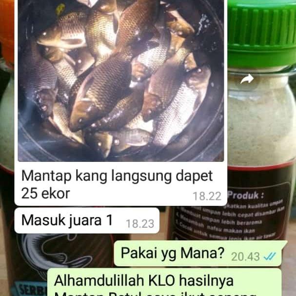 Essen Salmon Merah Membeli Jualan Online Aksesoris Memancing Dengan Harga Murah Lazada Indonesia