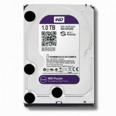 WD Western Digital Purple 1TB SATA3 - Harddisk 3.5