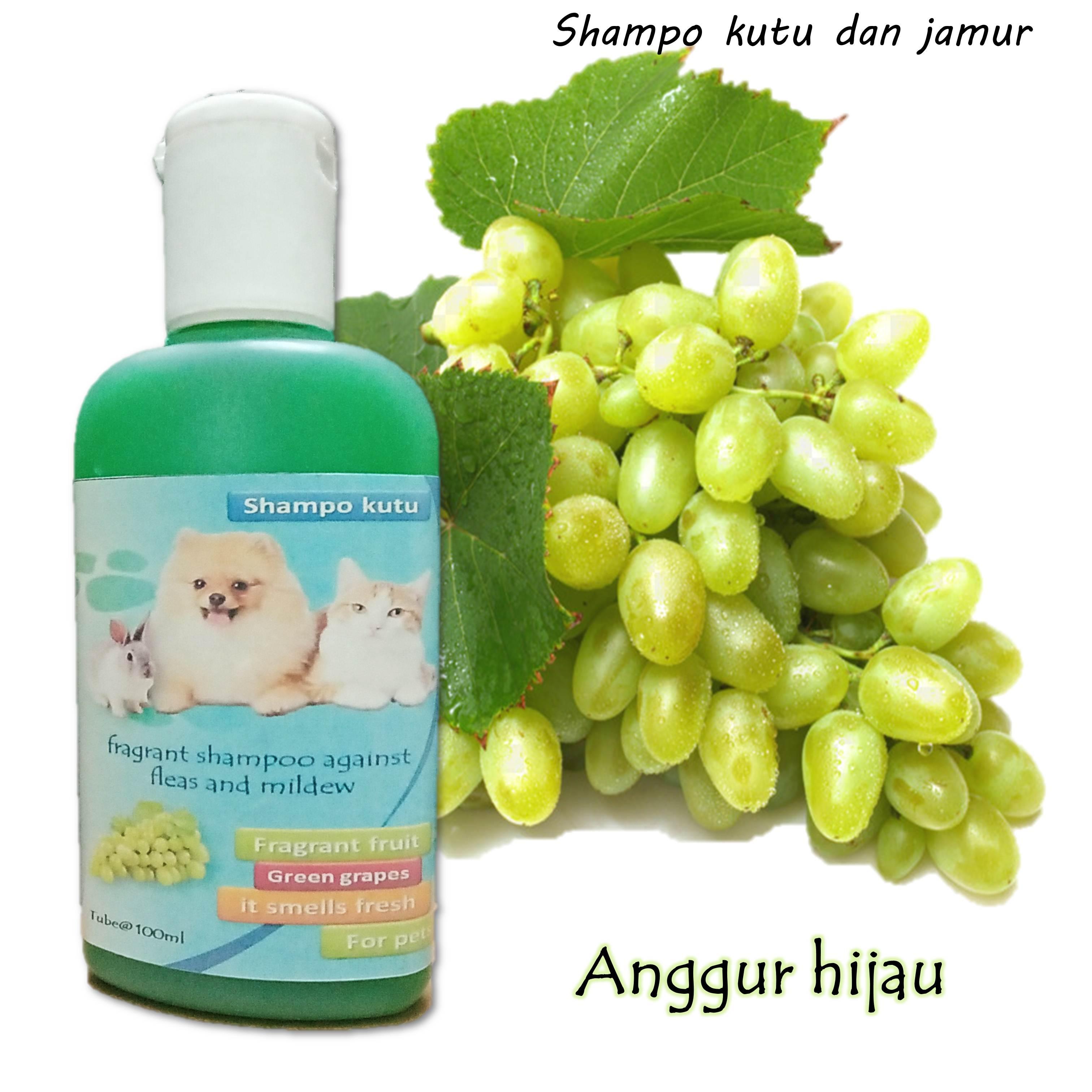 Shampo Kutu Dan Jamur Kucing Anjing Dan Kelinci 100ml Lazada Indonesia