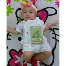 BABY MILESTONE CARD - DINO SERIES - 20 CARDS - KARTU SELFIE BAYI