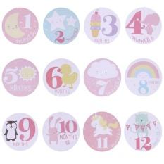 Bayi Bulanan Memotret Stiker Bulan 1-12 Tonggak Stiker (Pink)