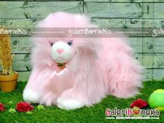 Boneka Kucing Anggora Pink ( HK - 201055 ) di lapak Galeri Boneka pinkcherry