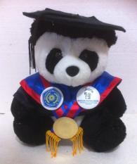 Boneka Wisuda Panda Toga Asli Seperti Almamater
