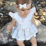 Jual Beli Female Baby Skirt Cotton Infant Love Hearts Empty Dresses Flying Sleeve Small Flower Flower White Intl