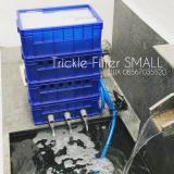 Top 10 Filter Kolam Ikan Koi 4 Susun Small Online