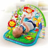 Fisher Price® Newborn 3 In 1 Musical Gym Di Indonesia