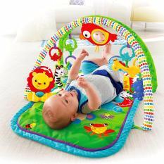 Dimana Beli Fisher Price® Newborn 3 In 1 Musical Gym Fisher Price