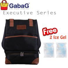 Beli Gabag Cooler Bag Executive Series Tristan Free 2 Ice Gel Seken
